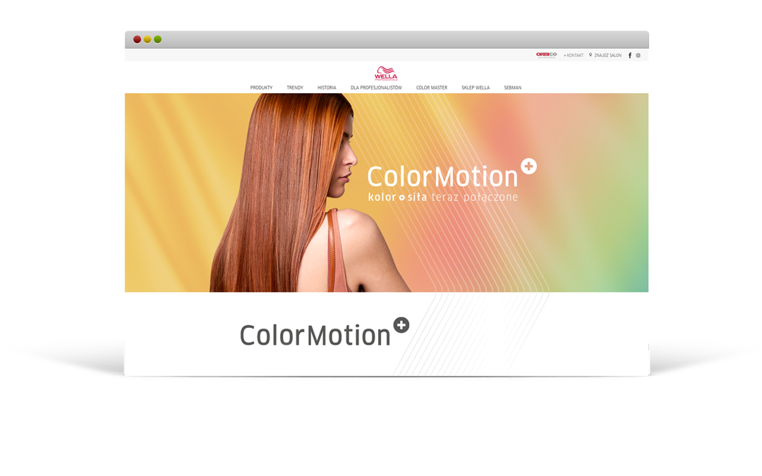 Wella Color Motion+